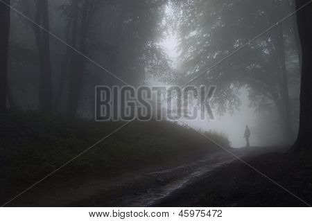 Man in the fog on a foggy day in the forest
