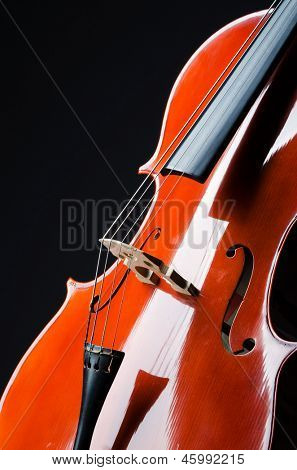 Violin on the black background