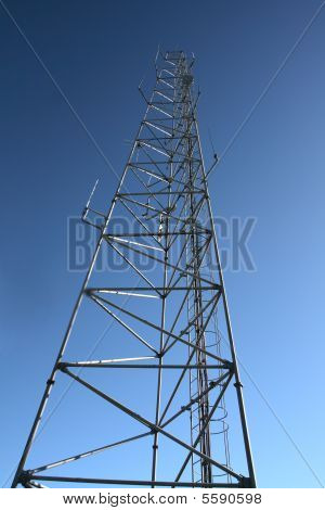 Cell Mast