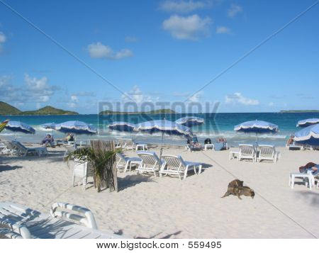 The Blues And Sands Of Orient Bay, St Martin