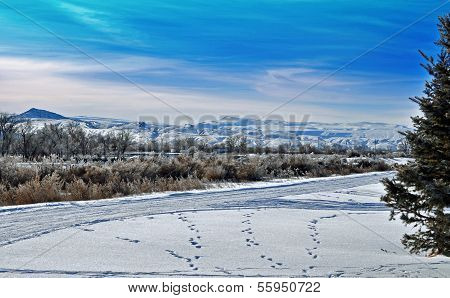 Beautiful Snowy Mountains in Wyoming
