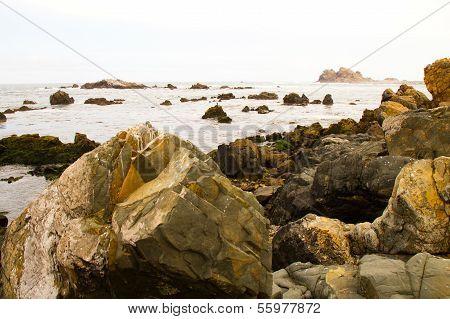 Ocean shore landscape