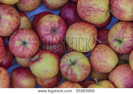 Jonagold Variety Apples Lying In A Chest At A Fruit And Vegetable Market.
