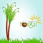 Happy Pongal, harvest festival celebration in South India with sugarcane and stylish text on nature background.  poster