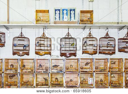 Birds In A Cage At The Birds Market In Hongkong poster
