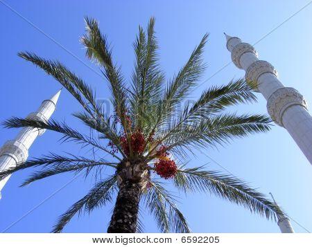 Minarets Of Mosques