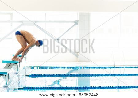 Young muscular swimmer in low position on starting block in a swimming pool poster