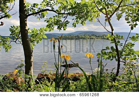 Lough Ree Ireland
