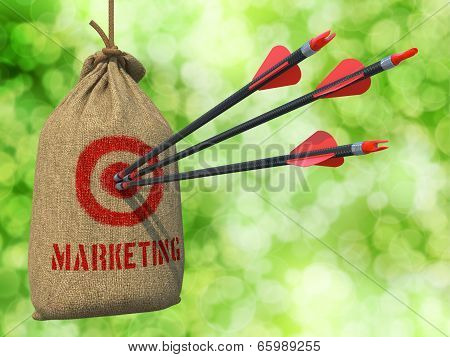 Marketing - Arrows Hit in Red Mark Target.