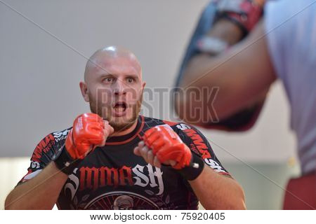 NOVOSIBIRSK, RUSSIA - OCTOBER 16, 2014: Unidentified MMA fighter in action on the open training. The event aimed to promote the MMA Friendship Cup which took place on November 8