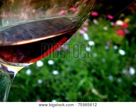 Glass of Red Wine Garden