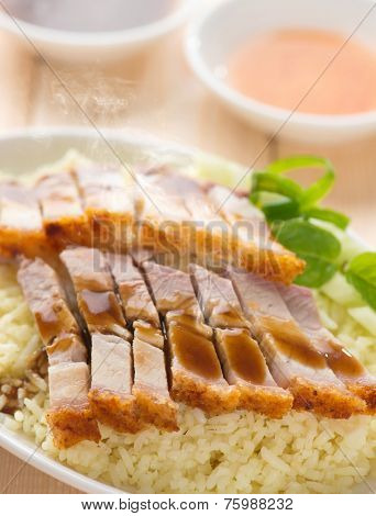 Chinese roasted pork belly rice served with soy and seafood sauce. Malaysian cuisine. Fresh cooked with hot steam and smoke.