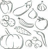 Doodle set of different vegetables isolated on white background poster