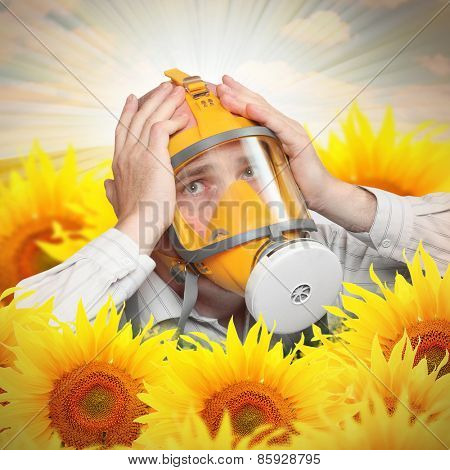 Unhappy man in protection mask in a sunflower field. Allergy concept.