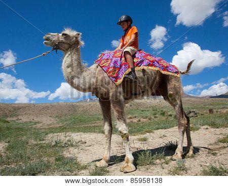 Boy Riding Astride Bactrian