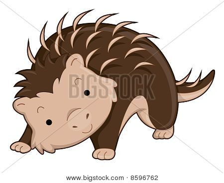 An Illustration Of A Cute Porcupine with Clipping Path poster