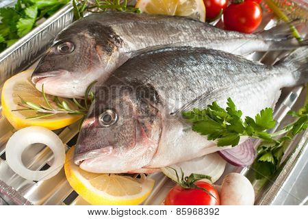 gilt head bream with vegetables on a grill poster