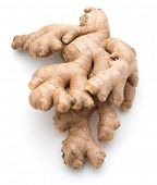 Fresh ginger root or rhizome isolated on white background cutout poster