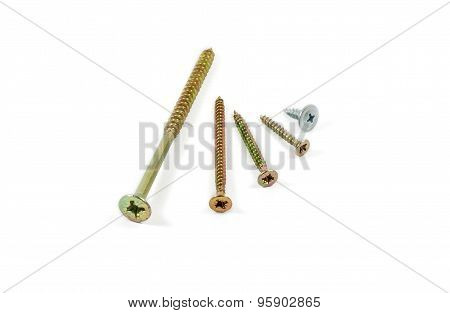 Several Wood Screws Different Sizes