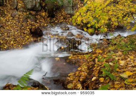 Waterfall And Foliage 004