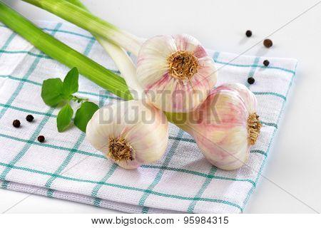 close up of fresh garlic bunch on checkered dishtowel