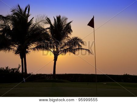 India. Goa. A sunset over palm trees and tags on the golf course