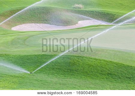 Sprinklers watering system working in fairway and sand bunker of green golf course.