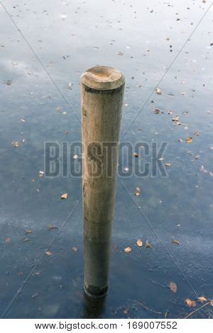 Closeup of a wooden pile in a frozen lake