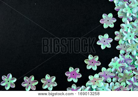 Closeup blue flowers decoration with black background