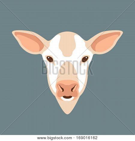 Cow calf vector illustration style Flat head