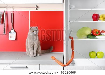 Cute cat stealing sausages in kitchen