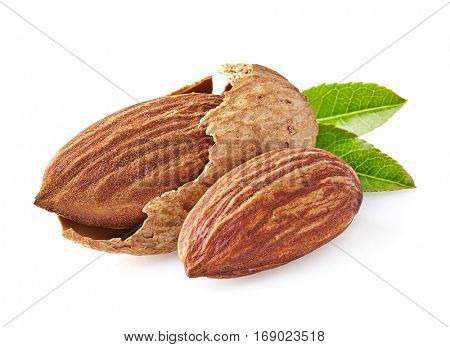 Almonds kernel in closeup