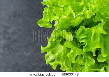 Close up of fresh organic green salad on stone background selective focus. Place for text.