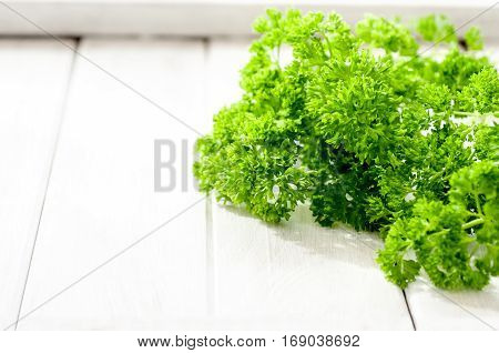 Fresh organic parsley on white wooden table selective focus