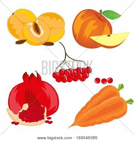 Vegetables with fruit and berry on white background is insulated