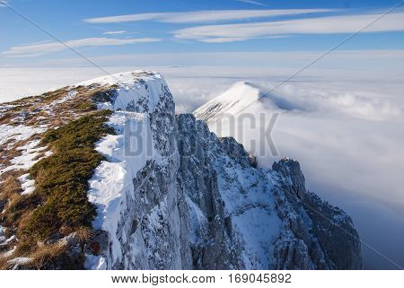 Winter mountains, Trem, Suva Planina, Serbia. Dry mountain in winter time.
