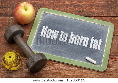 How to burn fat concept  -  slate blackboard sign against weathered red painted barn wood with a dumbbell, apple and tape measure