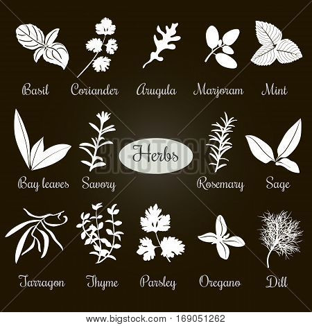 Big Set Of Simple Flat Culinary Herbs. White Silhouettes