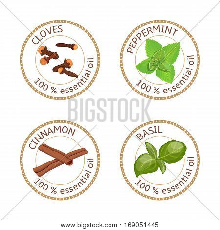 Set Of Essential Oils Labels. Cloves, Peppermint, Cinnamon, Basil