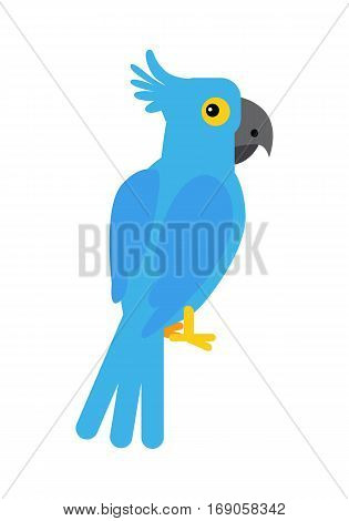 Blue cockatoo parrot illustration. Funny bird sitting isolated on white background. Animal adorable parrot vector character. Cockatoo icon. Wildlife character