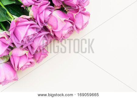 Valentines day violet fresh rose flowers border close up top view flat ly scene