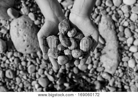 Black and white photo of hand holding sea shingle day