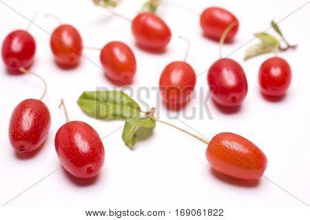 Vivid red cherry silverberry fruit(Elaeagnus multiflora var. gigantea) in front of fruit blurs