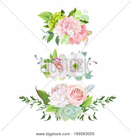 Stylish mix of horizontal spring bouquets vector design set. Rose orchid hydrangea white peony poppy echeveria succulent various plants flowers and herbs. All elements are isolated and editable