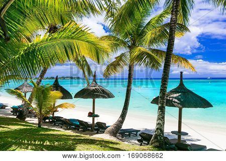 Relaxing tropical scenery -beautiful palm beach in Mauritius island