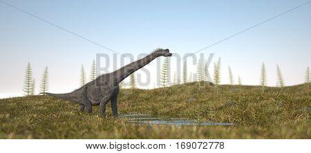 3d illustration of the walking brachiosaurus