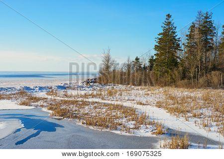 Winter shoreline with salt marsh along the coast of Prince Edward Island, Canada.