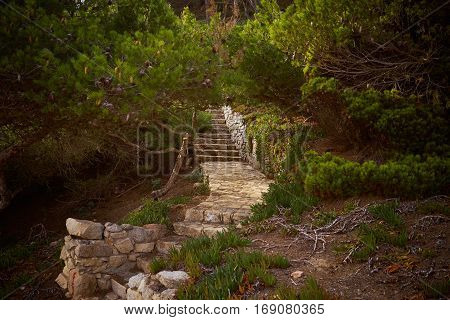 Old and empty stone paved path with stairs goes between pine tree bushes somewhere in mountain forest