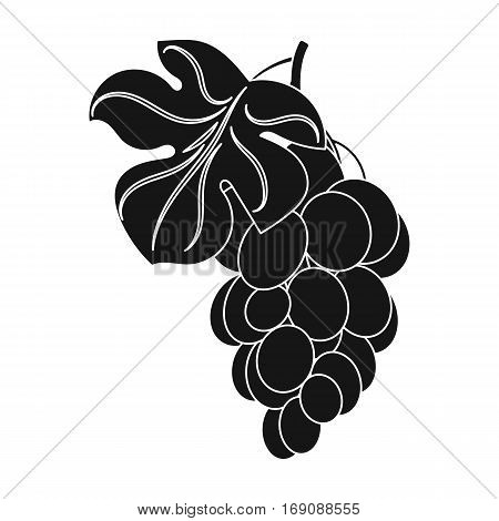Bunch of yellow grapes icon in black design isolated on white background. Wine production symbol stock vector illustration.
