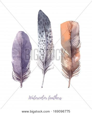 Hand Drawn Vector Illustration - Watercolor Feathers Collection. Aquarelle Boho Set. Isolated On Whi